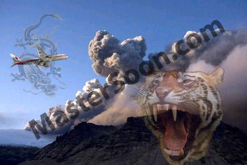 Modern Heavenly Dragon & EarthlyTiger 现代版 天龙地虎