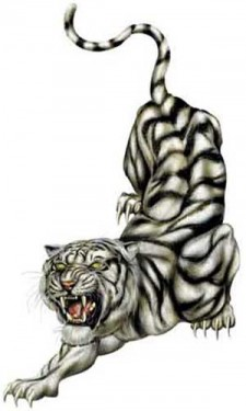 Western Metal Tiger 2010  西方金老虎
