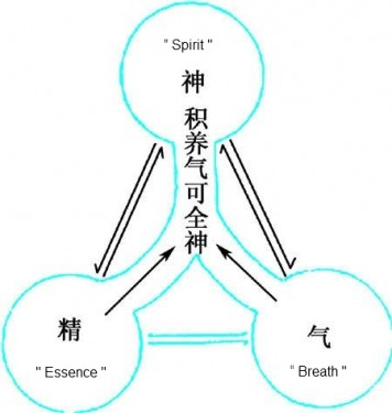 Daosim Meditation   There are 3 life force components in your body. Namely, Essence, Breath and Spirit. 道家静坐  精 气 神