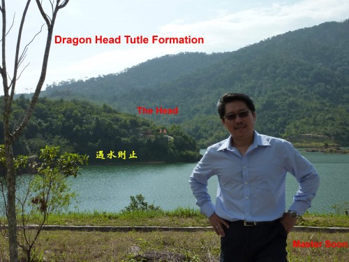 Real Dragon Head Turtle Formation. I was standing on Tutle's White Tiger. It is a huge Real Dragon Head Formation.
