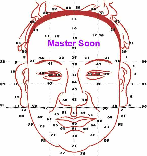 Face Reading With Master Soon(1) The numbers show the running age of  a person . 孙老师面相学(一) 这是面相流年图.