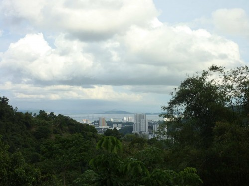 Places ( Jungle in Penang Hill) had been spent during my Daoism meditation