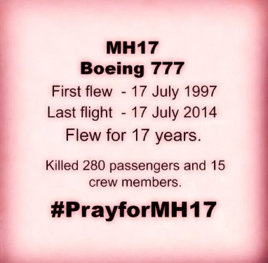 MH 17