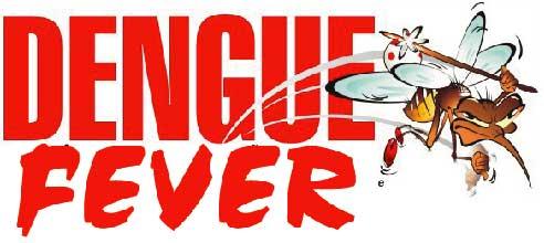 dengue feng shui