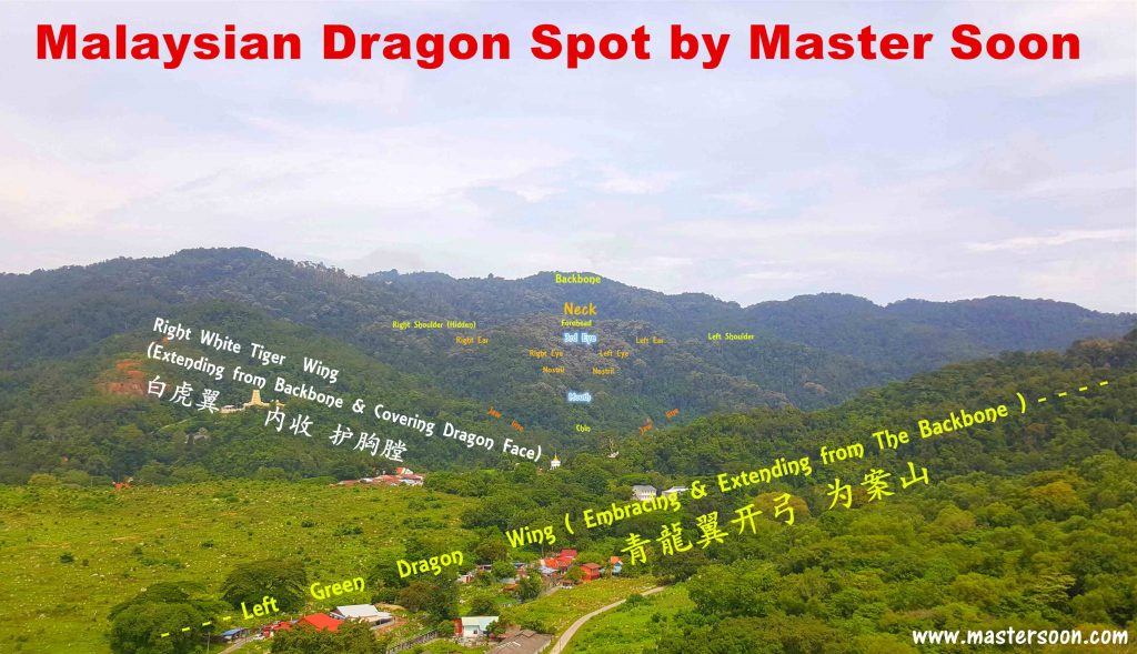 Malaysian Dragon Spot 4 By Master Soon 2020